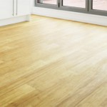 What is the hardest type of bamboo flooring?
