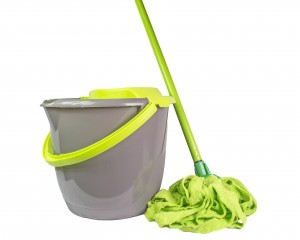 Lime green and grey bucket and mop